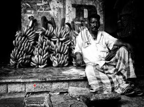 banana merchant wordpress