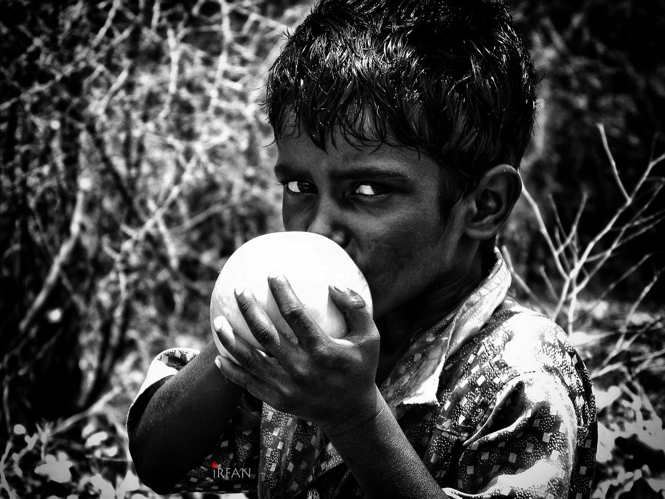 kid eating fruit wordpress