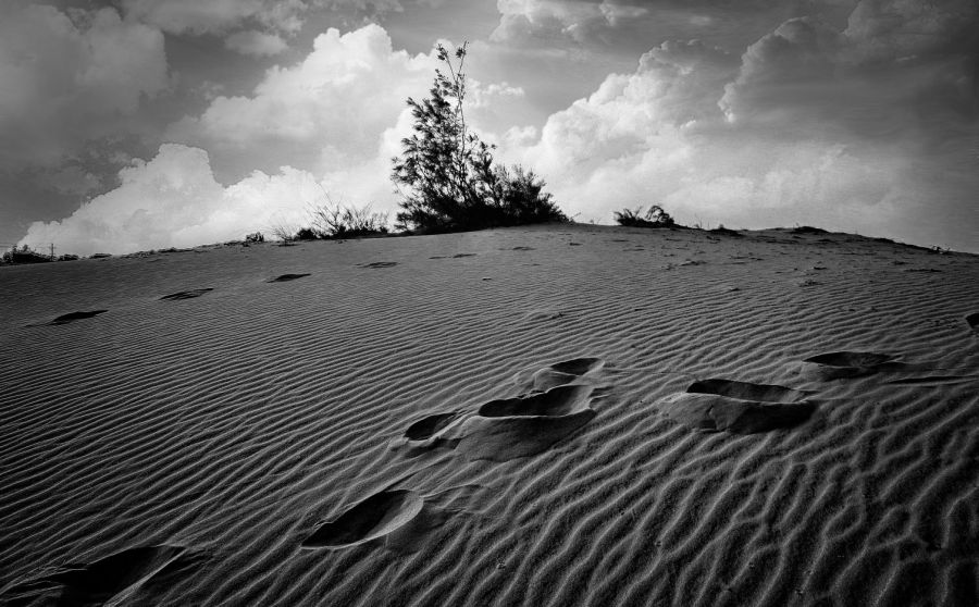 sand dunes alamparai wordpress